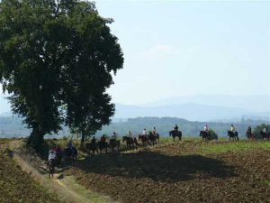 horse-back-riding-tuscany-4